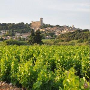 le village de châteauneuf-du-pape surplombant un vignoble