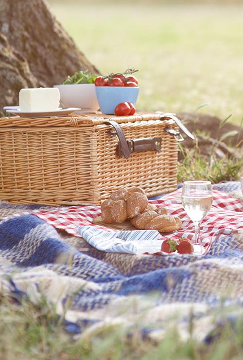 dégustation de vins et chocolats sur une table en bois